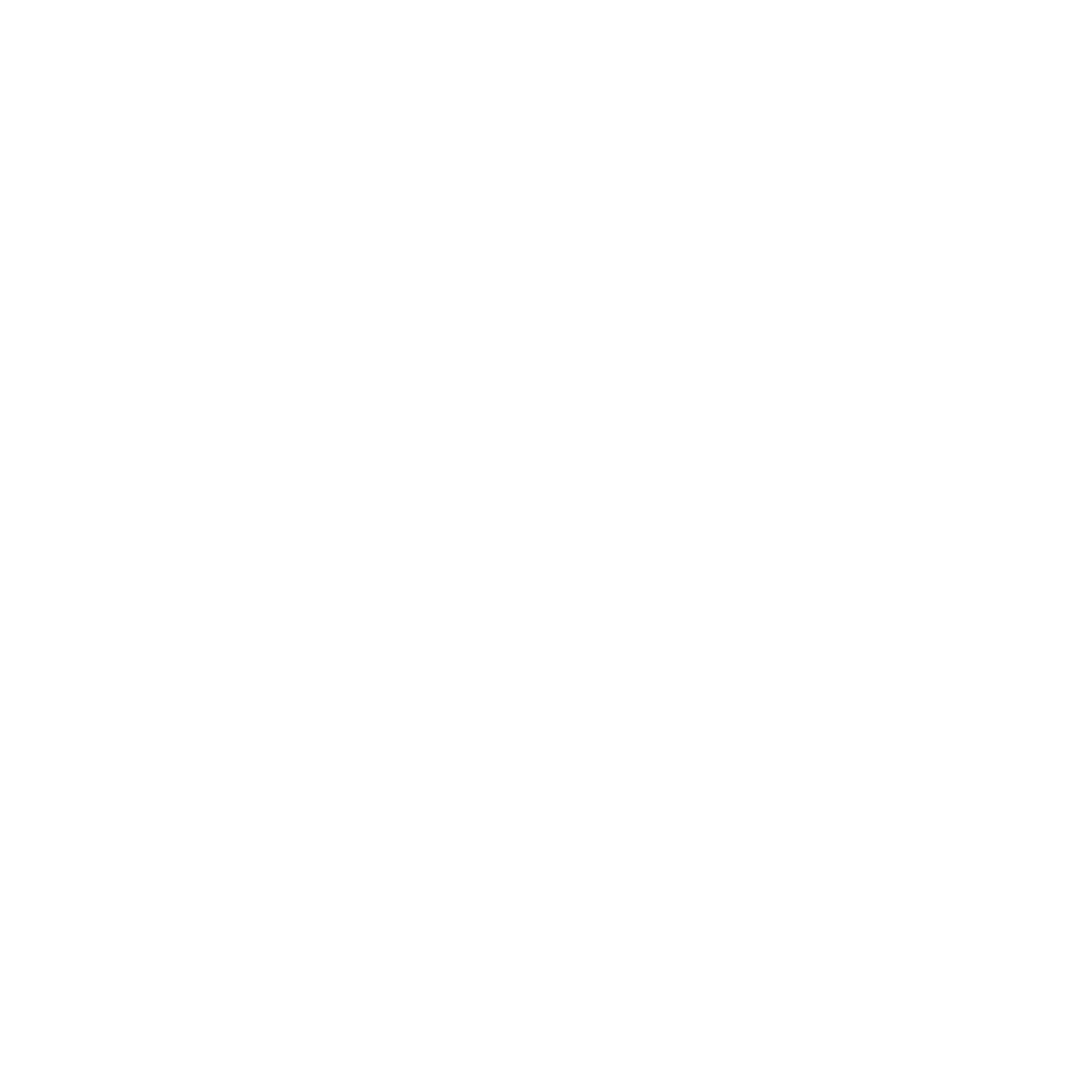 Logo Kona blanc